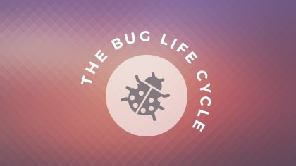 Bug_Cycle2-min